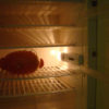 frigo poupée JOUET plastique